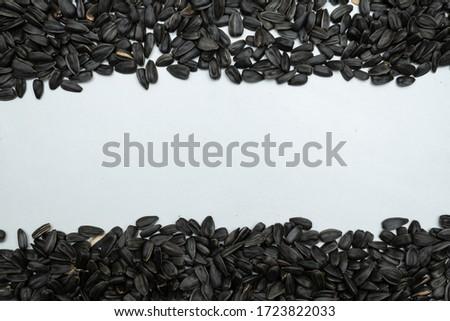 кадр веревку подсолнечника семян белый место Сток-фото © alekleks
