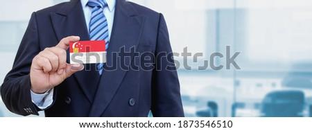 Creditcard Singapore vlag bank presentaties business Stockfoto © tkacchuk