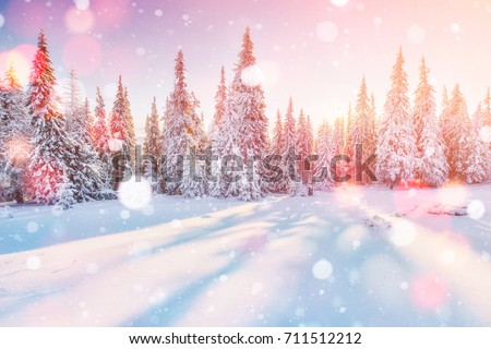 beautiful winter landscape design with creative snow tree illust Stock photo © SArts