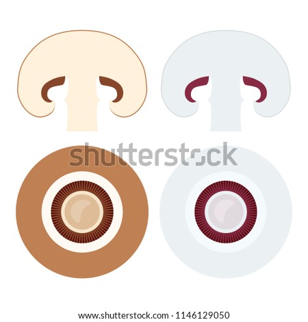 Champignons set with flat lay icons of whole and sliced brown or Stock photo © SwillSkill
