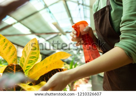 Image of woman assistant 20s standing over plants in conservator Stock photo © deandrobot
