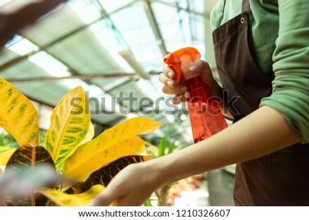 Kép nő asszisztens 20-as évek áll növények Stock fotó © deandrobot