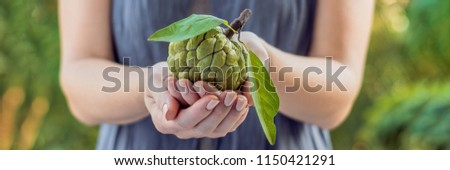 Stockfoto: Mooie · vrouwelijke · handen · groene · banner · lang