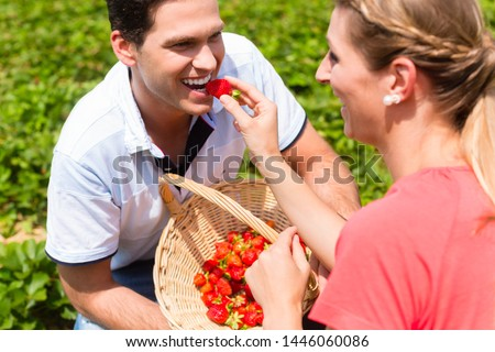 Woman feeding man strawberries she picked herself Stock photo © Kzenon