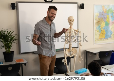 Vista lateral colegial humanos esqueleto modelo Foto stock © wavebreak_media
