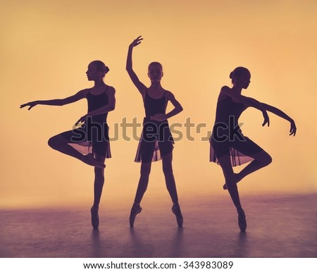 Beautiful young ballerina in pointe Stock photo © ruslanshramko