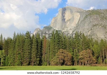 famous rock formation half Dome  in the romantic valley of yosem Stock photo © meinzahn