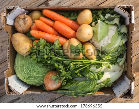 Organic vegetables. Fresh agriculture harvest in cardboard box Stock photo © LoopAll