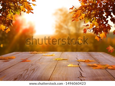 Falling Autumn Leaves On a Wooden Table Background Stock photo © solarseven