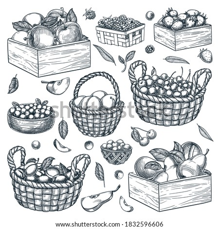 Fresh raw organic blueberries in vintage wooden box on stone kitchen background. Food concept Stock photo © DenisMArt