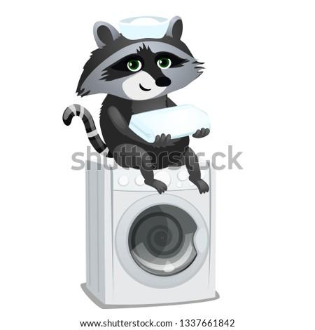 mosómedve · szobalány · ül · mosógép · izolált · fehér - stock fotó © Lady-Luck