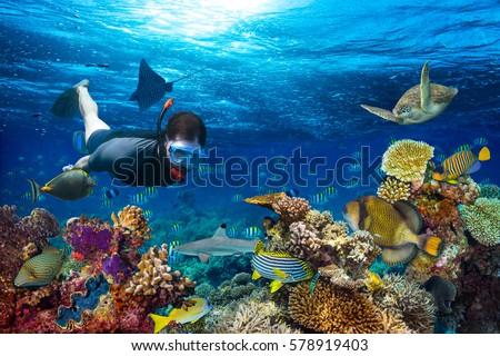 young men snorkeling exploring underwater coral reef landscape background in the deep blue ocean wit Stock photo © galitskaya