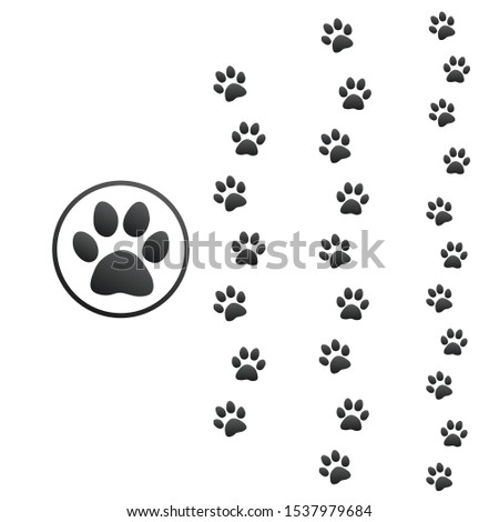 Three different size animal paw prints, Stock Vector illustration isolated on white background. Stock photo © kyryloff