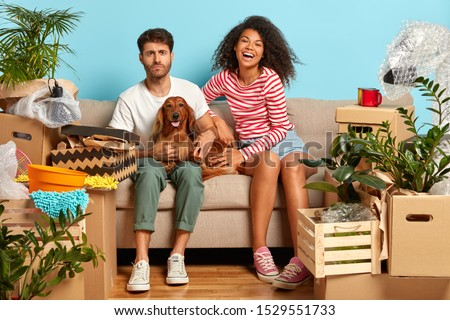 Smiling African American woman poses with domestic animal, looks gladfully at camera, cuddles dog, s Stock photo © vkstudio