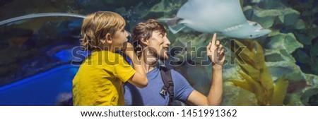 Syn ojca patrząc ryb tunelu akwarium banner Zdjęcia stock © galitskaya