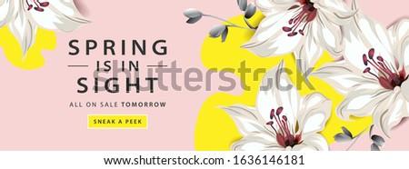 Voorjaar verkoop horizontaal web banner poster Stockfoto © ikopylov