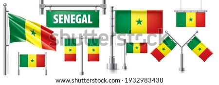 Vector set of the national flag of Senegal in various creative designs Stock photo © butenkow