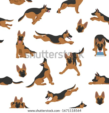 black and tan german shepherd dog Stock photo © eriklam