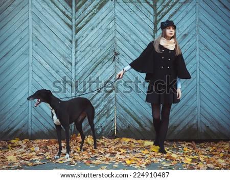 Jóvenes chica atractiva perro galgo otono aire libre Foto stock © vlad_star