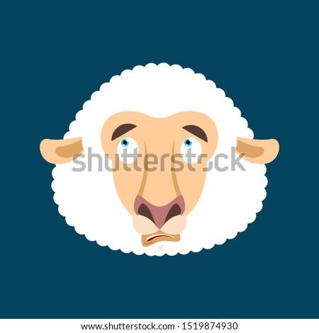 Koyun karışık duygular sürpriz Stok fotoğraf © popaukropa