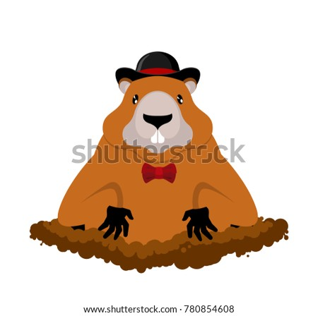 Groundhog Day. Marmot in hat. Rodent aristocrat. Illustration fo Stock photo © MaryValery