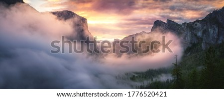 Winter landscape with fog in the mountains Stock photo © Kotenko