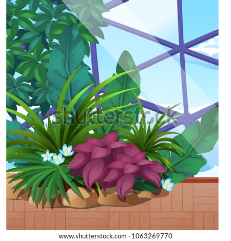 Artificial garden of tropical plants under a glass dome. Poster on the theme of nature. Growing plan Stock photo © Lady-Luck