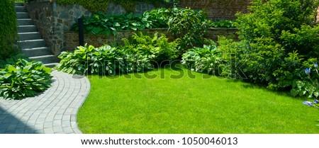 walkway in garden Stock photo © Witthaya