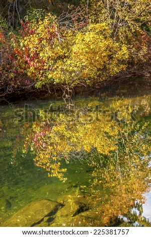 fall colors wenatchee river reflections abstract stevens pass le stock photo © billperry