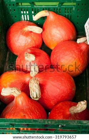 red roter Hokkaido cucurbita pumpkin pumpkins from autumn harves Stock photo © juniart