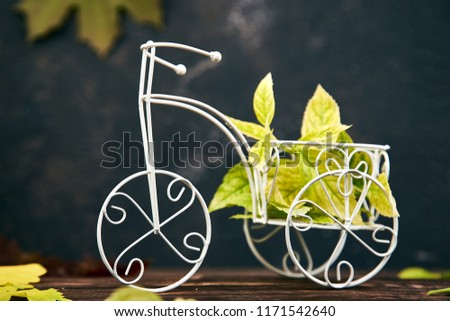 Kreatív elrendezés bicikli miniatűr színes őszi levelek Stock fotó © Illia
