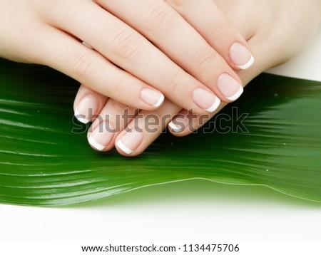 piękna · ręce · manicure · zielone · liście · odizolowany - zdjęcia stock © serdechny