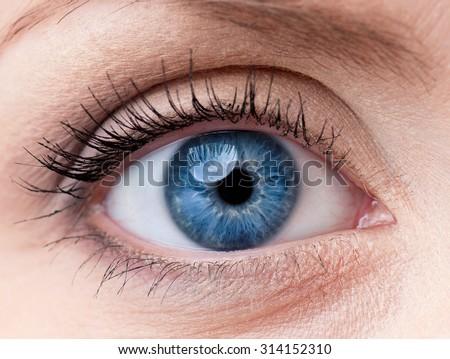 Close-up macro of beautiful blue female eye with perfect shape e Stock photo © serdechny