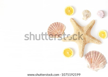 Composition of exotic seashells, oyster, starfish and lemon slices on white wooden background. Tropi Stock photo © serdechny