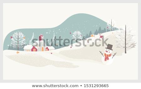 piękna · dziewczyna · alpejski · narty · kobiet · moda · śniegu - zdjęcia stock © margolana