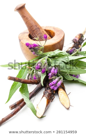 Comfrey and mortar Stock photo © Saphira