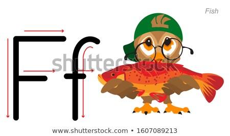 Inglês alfabeto carta linguagem coruja Foto stock © orensila