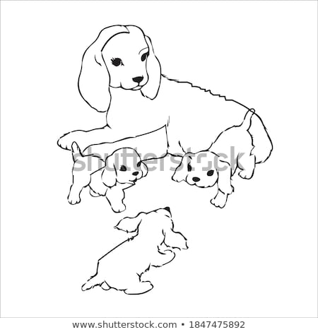 cartoon dogs and puppies coloring book page Stock photo © izakowski