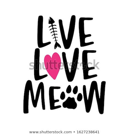Viver amor miado palavras gato pegada Foto stock © Zsuskaa