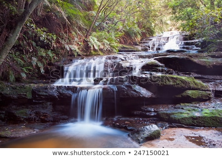 Cascading waterfall in the Blue Mountains Stock photo © lovleah