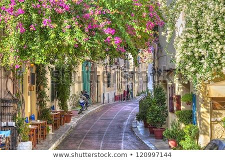 Ulicy Ateny Grecja mały stromy Zdjęcia stock © neirfy
