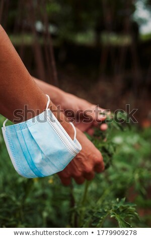 Agricultor hombre mascarilla quirúrgica muñeca primer plano Foto stock © nito