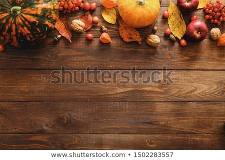 abóboras · cair · folhas · legumes · branco · laranja - foto stock © sandralise