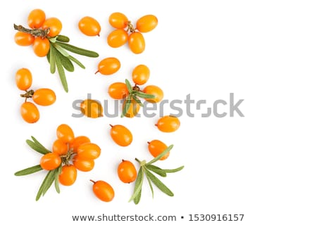 Deniz olgun turuncu karpuzu meyve eczane Stok fotoğraf © Bananna