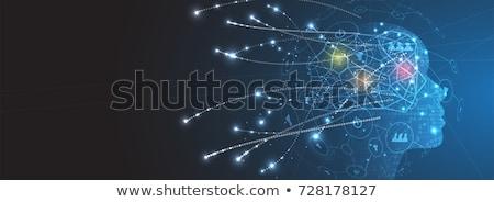 Hersenen onderwijs Blauw wetenschap tech menselijke Stockfoto © 4designersart