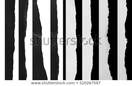 Blank torn notepaper page isolated on a black background. Stock photo © latent