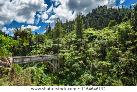 Bridge to nowhere Stock photo © Imagix