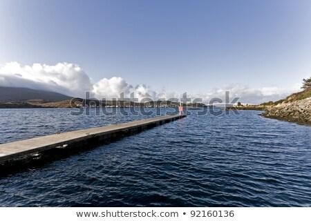 peer in scottish bay Stock photo © gewoldi