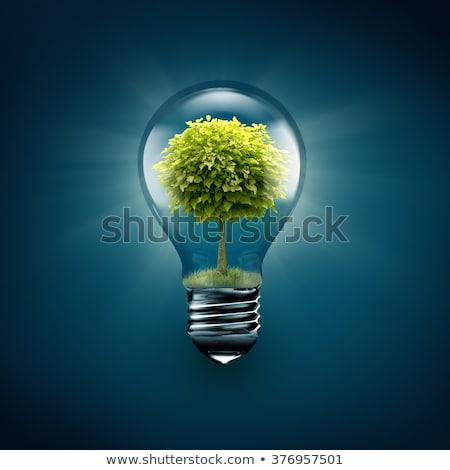 ampoule · lumière · arbre · à · l'intérieur · bleu · technologie - photo stock © vlad_star