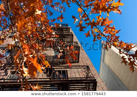 Fire escape on brick building from below Stock photo © backyardproductions